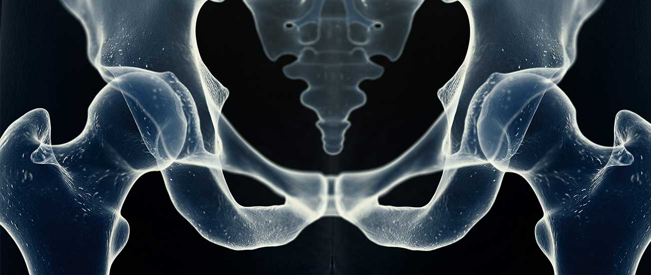 x-ray of hip joint and coccyx tailbone