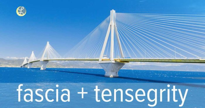 white bridge spanning blue water with mountains representing a tensegrity model